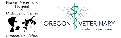 Veterinary And Orthopedic Care In Bend Or Plateau Veterinary